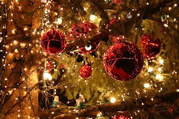 Как украсить елку на Новый 2015 год Козы
